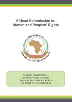 General Comment No 3 On The African Charter Human And Peoples Rights Right To Life Article 4